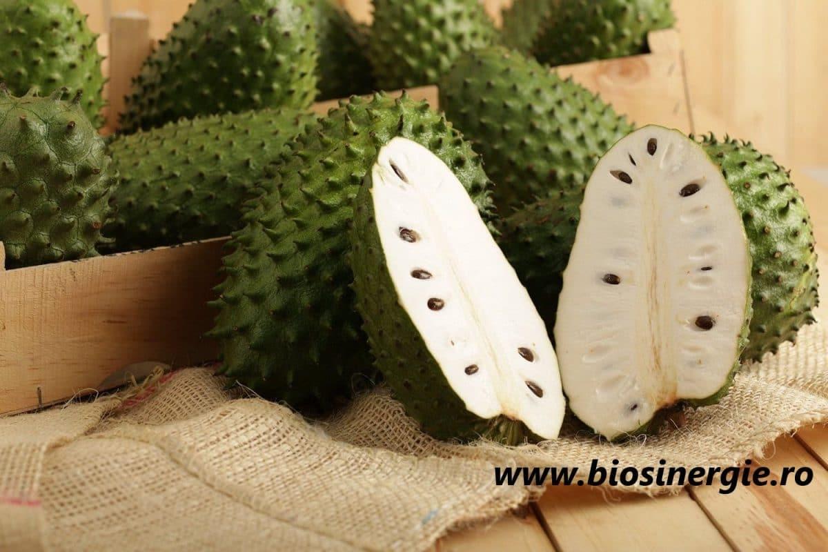 Graviola Soursop Guanabana pret cancer tratamet