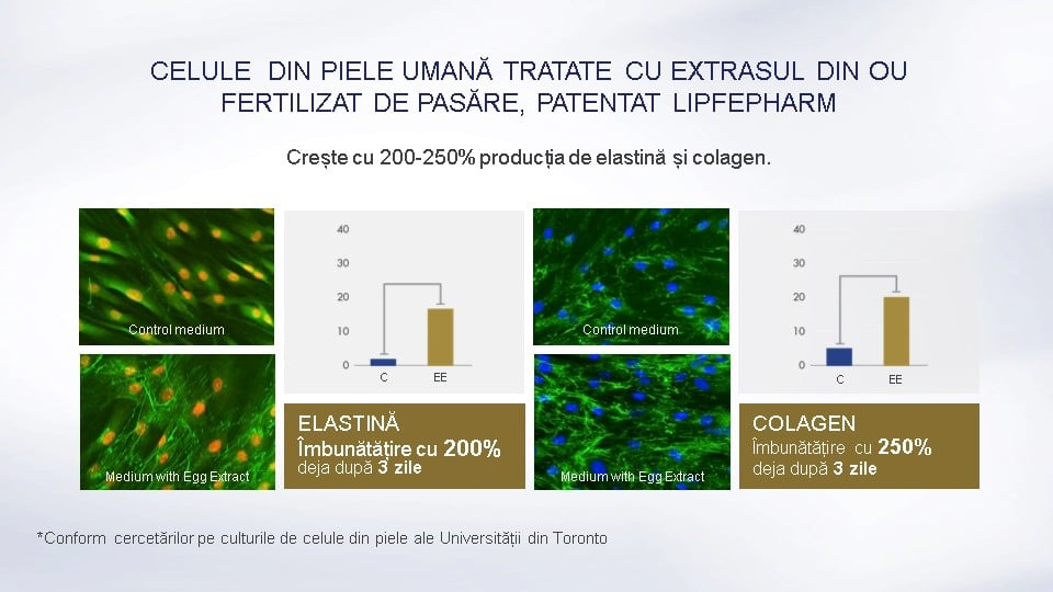 Lamiderm Apex bio ser unic pentru piele celule din piele umana tratate elastina si colagen