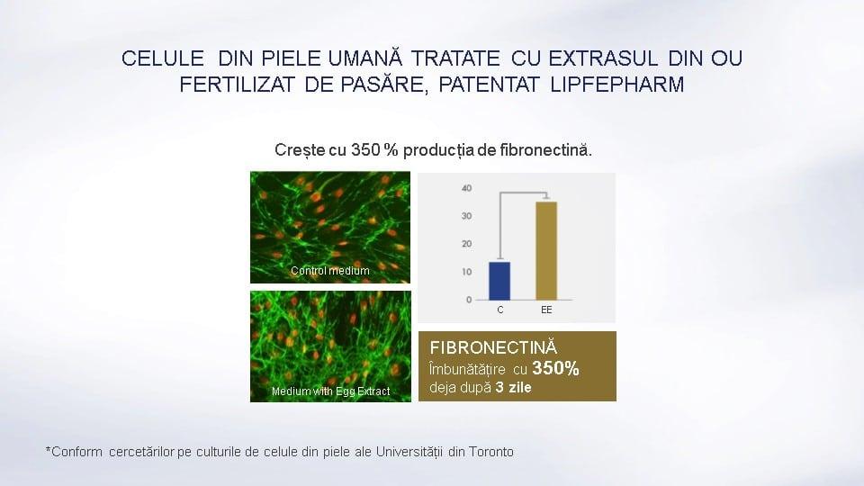 Lamiderm Apex bio ser unic pentru piele celule din piele umana tratate fibronectina