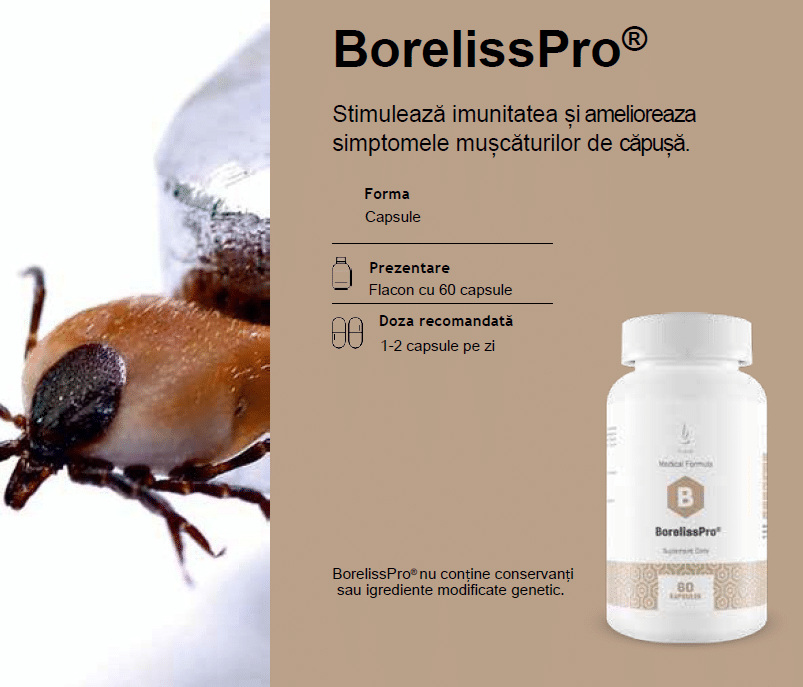 BorellisPro